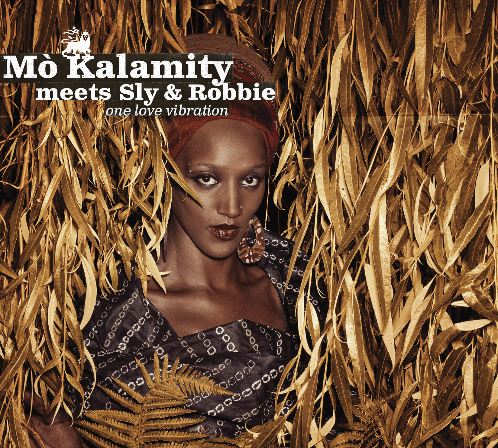 pochette-cover-artiste-Mo kalamity-album-Roots Party