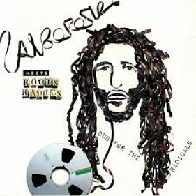 album-artiste-Alborosie Meets Roots Radics-Dub For The Radicals